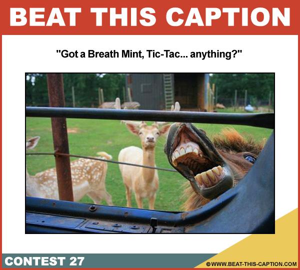 Beat This Caption Contest 27