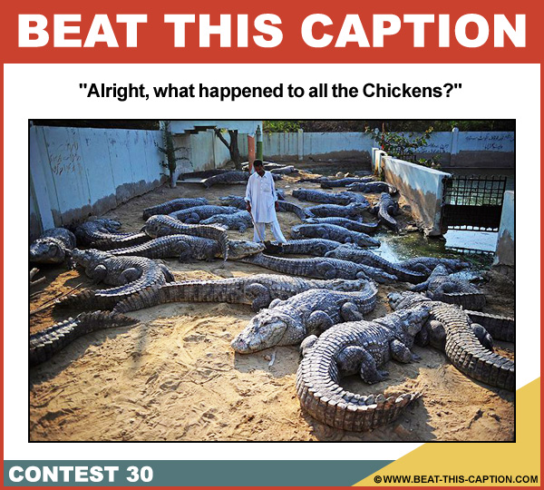 Beat This Caption Contest 30