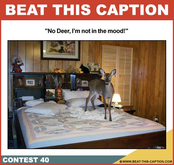 Beat This Caption Contest 40
