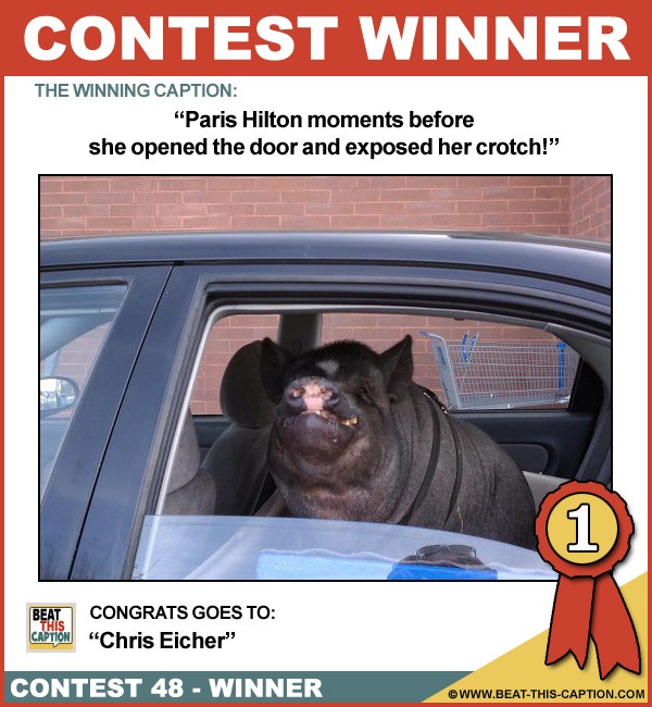 Beat This Caption Contest 48 Winner