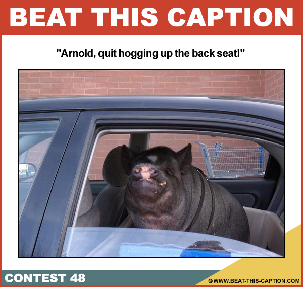 Beat This Caption Contest 48